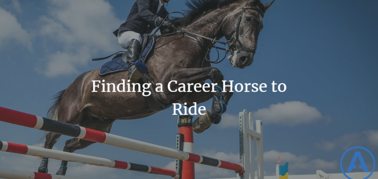 Finding a Career Horse to Ride